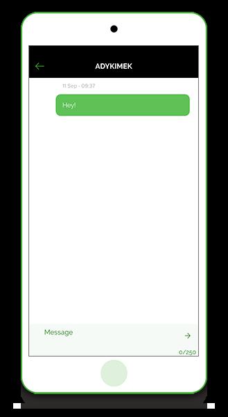 In-app messenger